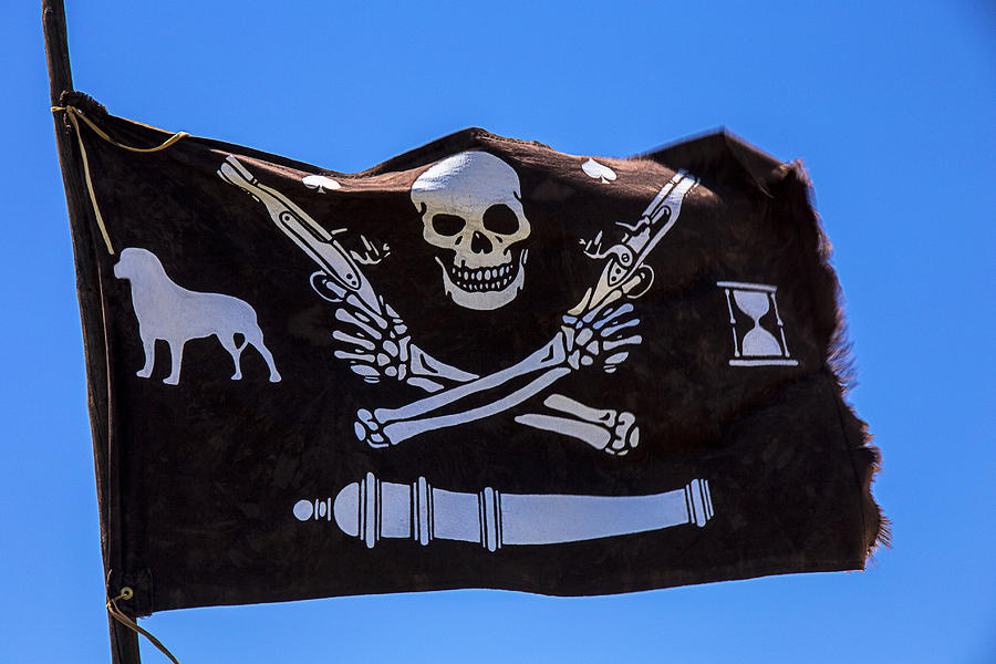 Gay Pirate Flag photo 27